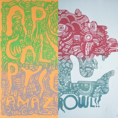 Mattia LulliniAPOCALYPTIC AMAZE +  GROWLfanzine + linocut print